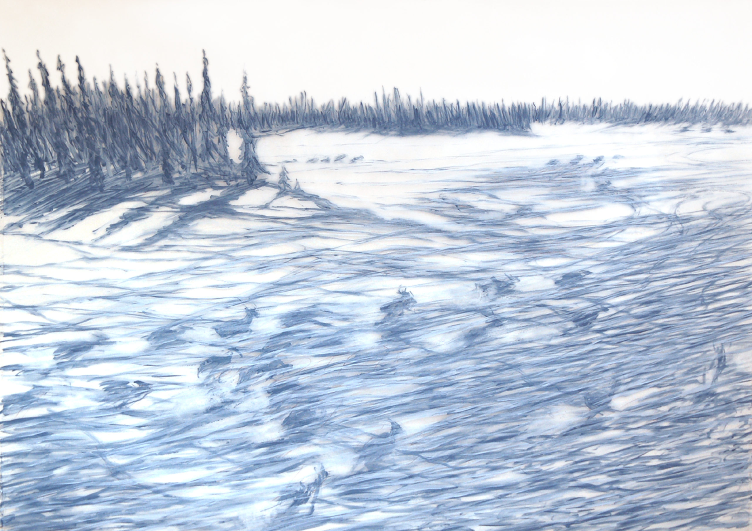 caribou trails 30x40 inches 2006 acrylic on mylar