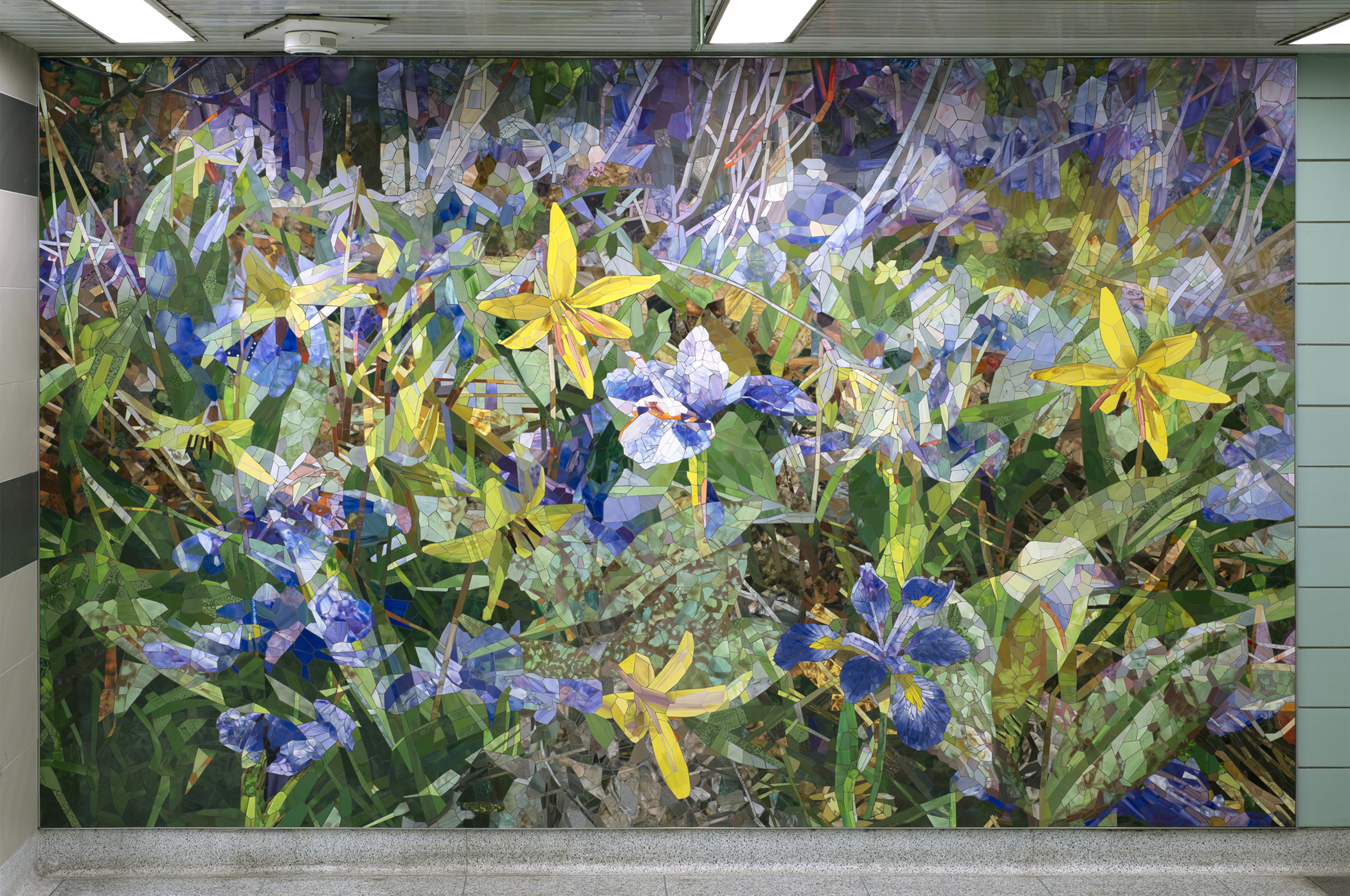 Trout Lily Blue Flag Iris 2020 ceramic mosaic 8x14ft (Chester subway, Toronto) commissioned by the TTC by Contemporary Canadian Artist Katharine Harvey